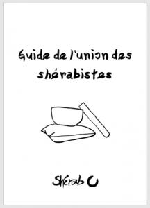 guideUDS---